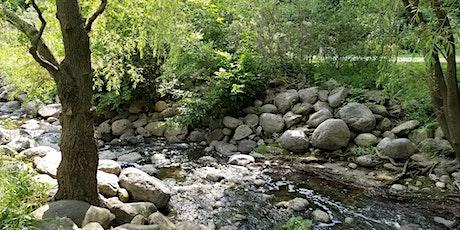 Indigenous Learning in Wilket Creek Ravine tickets