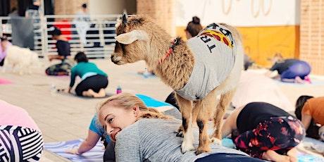 Halloween Costume Goat Yoga @ Legacy West! tickets