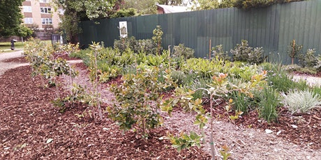 Food Forests in Brunswick tickets