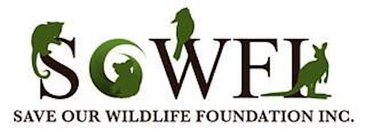 Wildlife Awareness and First Aid image