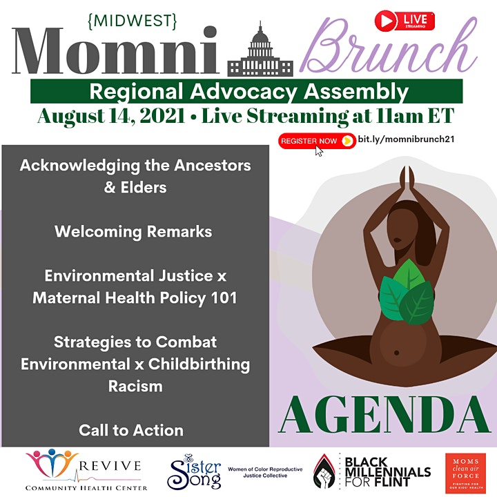 RCHC, SisterSong & BM4F Present: The MomniBrunch Regional Advocacy Assembly image