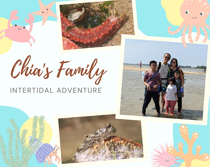 Private Intertidal Adventure with Biogirl MJ image