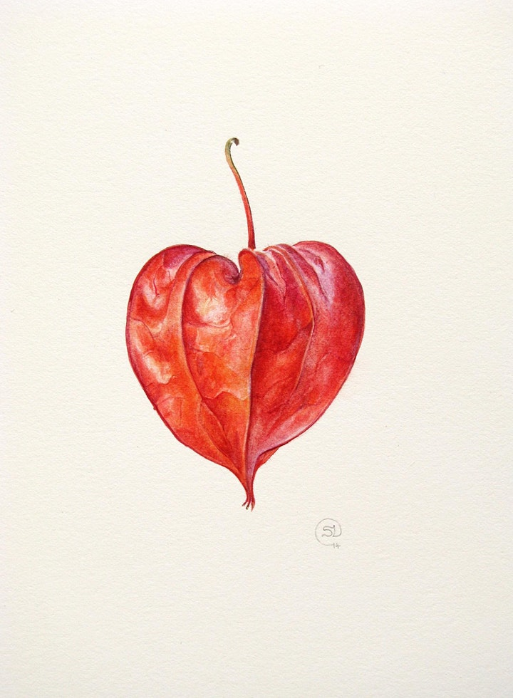 Autumn in Watercolour - Weekend Workshop with artist Shevaun Doherty image