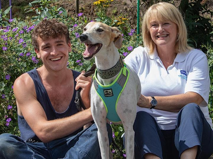 World Animal Day - York Animal Home Fundraiser image