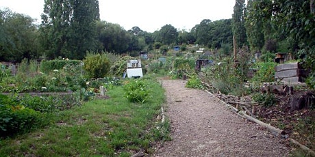 One Tree Hill Allotments - A Botanical Survey jointly with LNHS tickets