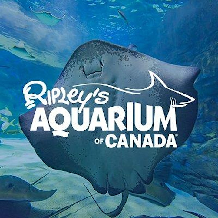 Ripley's Aquarium Trip (ONLY for Summer Camp Students) image
