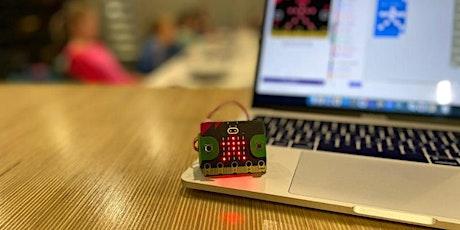 Dag van de Wetenschap: workshop micro-bits tickets