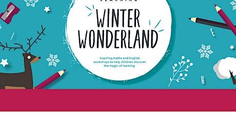 Winter Wonderland - Comprehension - Year 5 & Year 6 tickets