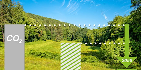 How to improve your green credentials & positively impact your bottom line tickets