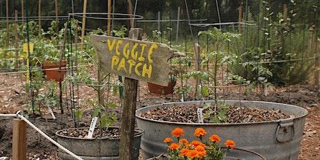 Virtual Fall 2021 Leon/Jefferson County Backyard Gardening Workshop tickets