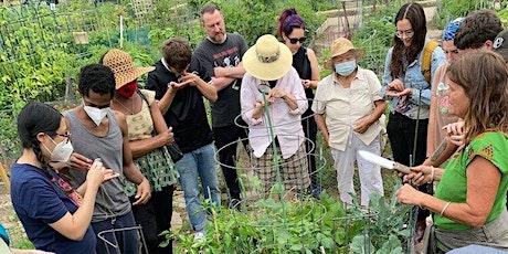 Soil Safari with Nance Klehm: Bioremediation Discussion tickets