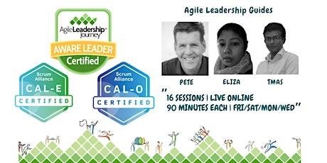 Certified Agile Leadership ( CAL-E + CAL-O)   :  ALJ Awareness Workshop tickets