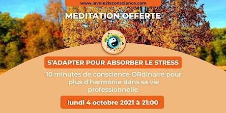 MEDITATION MENSUELLE : S'ADAPTER POUR ABSORBER LE STRESS billets