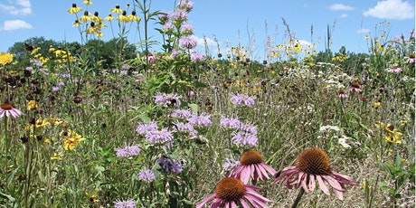 Landscaping with Natives - Maximizing Ecological Value of Your Landscape tickets