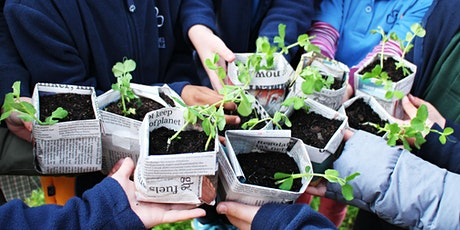Summer Veggies: Plant now, Eat later tickets