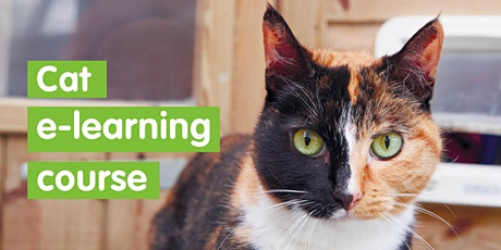 Cat e learning course tickets