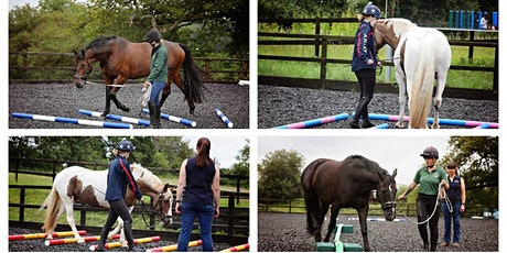 The Theory of Polework – Practical AFTERNOON COURSE for Horse Owners tickets