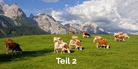 Teil 2 : Ausbildung zum Coach (RELF®) im Appenzeller Ländle/Schweiz Tickets