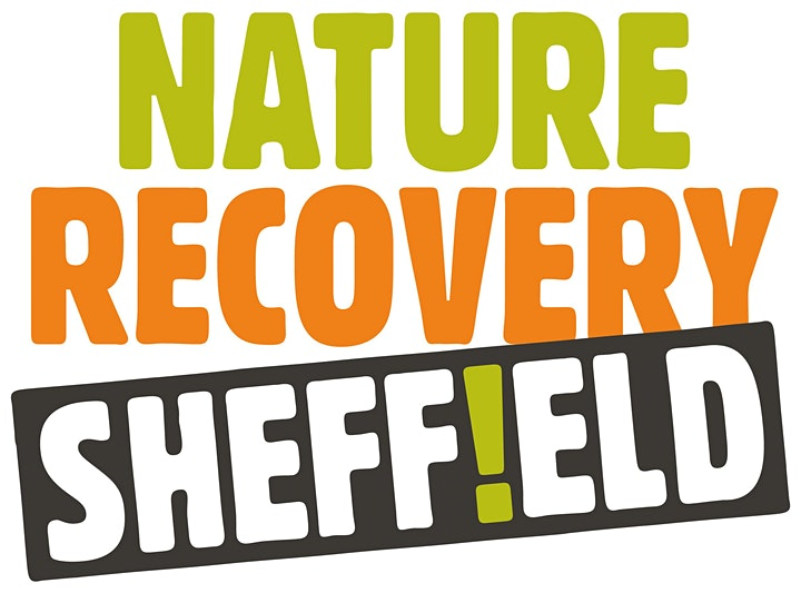 Nature Recovery Sheffield Workshop image