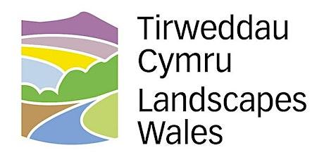 Tirweddau Cymru Landscapes Wales Seminar 2021 tickets
