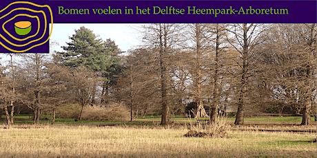 Bomen voelen in het Delftse Arboretum-Heempark tickets