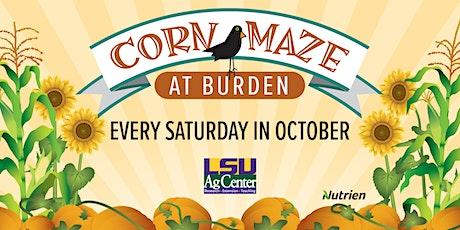 Corn Maze at Burden 2021 tickets