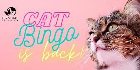 Cat Bingo! tickets