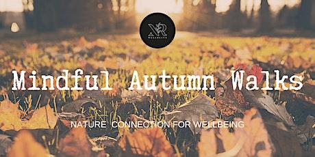 Autumn Forest Bathing tickets