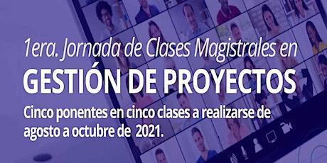Planificación y Control de Proyectos (por Nelson Hernández) tickets