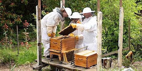 the AB(ee)C of Beekeeping! tickets