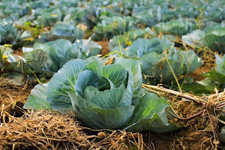Infoanlass Agricultura Regeneratio image