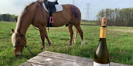 Horseback Trail Ride & Wine Tasting tickets