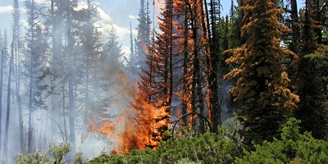 Wildfire in the Western US: Causes, Consequences, & Adaptation Tickets