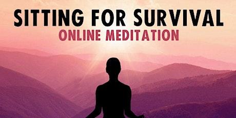 Regenerative Climate Meditation - Sitting For Survival tickets