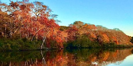 Fall Foliage/Sunrise Kayak Tour on the Carmans River tickets
