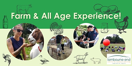 Farm Experience and Activity Afternoons tickets