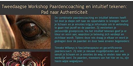 Workshop Paardencoaching en intuïtief tekenen: PAD NAAR AUTHENTICITEIT tickets