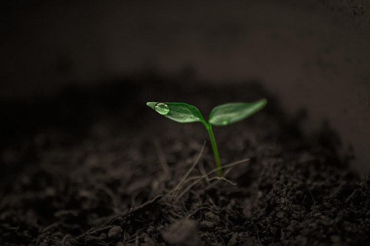 The future of soil science, climate change and agriculture image