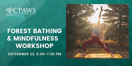 Forest Bathing and Mindfulness Workshop tickets