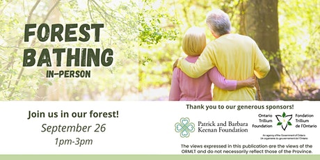Forest Bathing: In-person Guided Forest Walk tickets