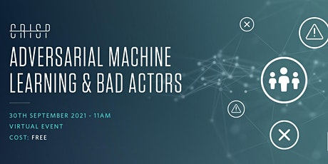Adversarial Machine Learning and Bad Actors tickets