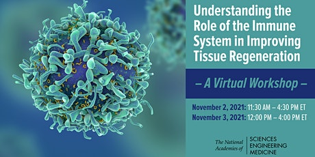 Understanding the Role of the Immune System: A Workshop tickets
