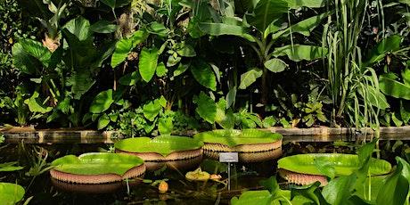 Oxford Botanic Garden Live tickets