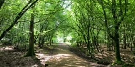 Pathway To Positivity - Positive Psychology, Meditation & Crystals tickets