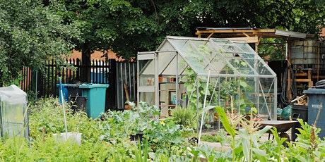 Great Big Green Week  - Dig into an allotment transformation tickets