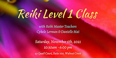Reiki Level 1 Class - Learn techniques, release patterns, connect to self tickets