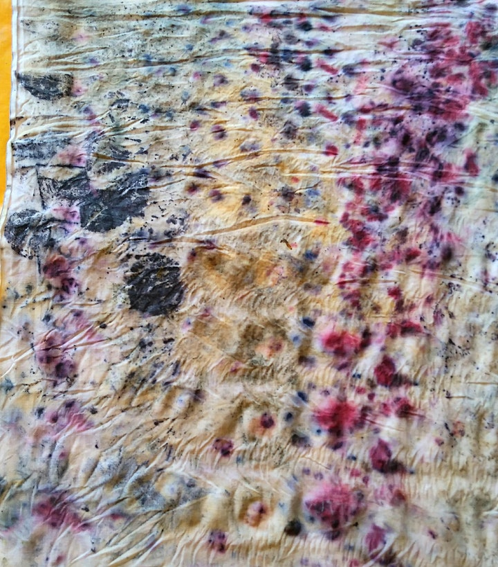 Eco Print onto Fabric with Leaves, Berries, Flowers and Spices image