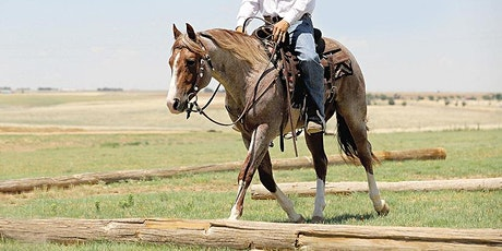 Trot Race (4-H El Paso County) tickets