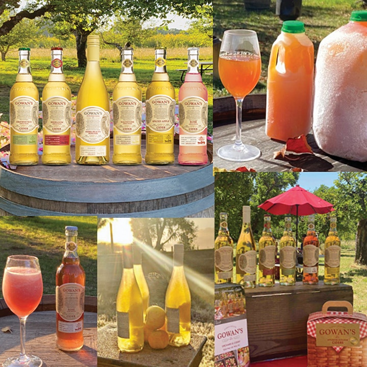 Gowan's Cider 145th Gravenstein Harvest Festival in the Orchard image