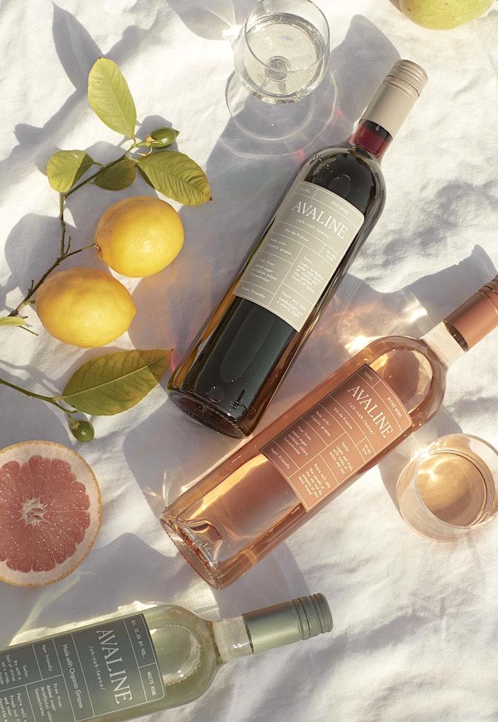 Avaline x Harris Teeter Virtual Wine Tasting image